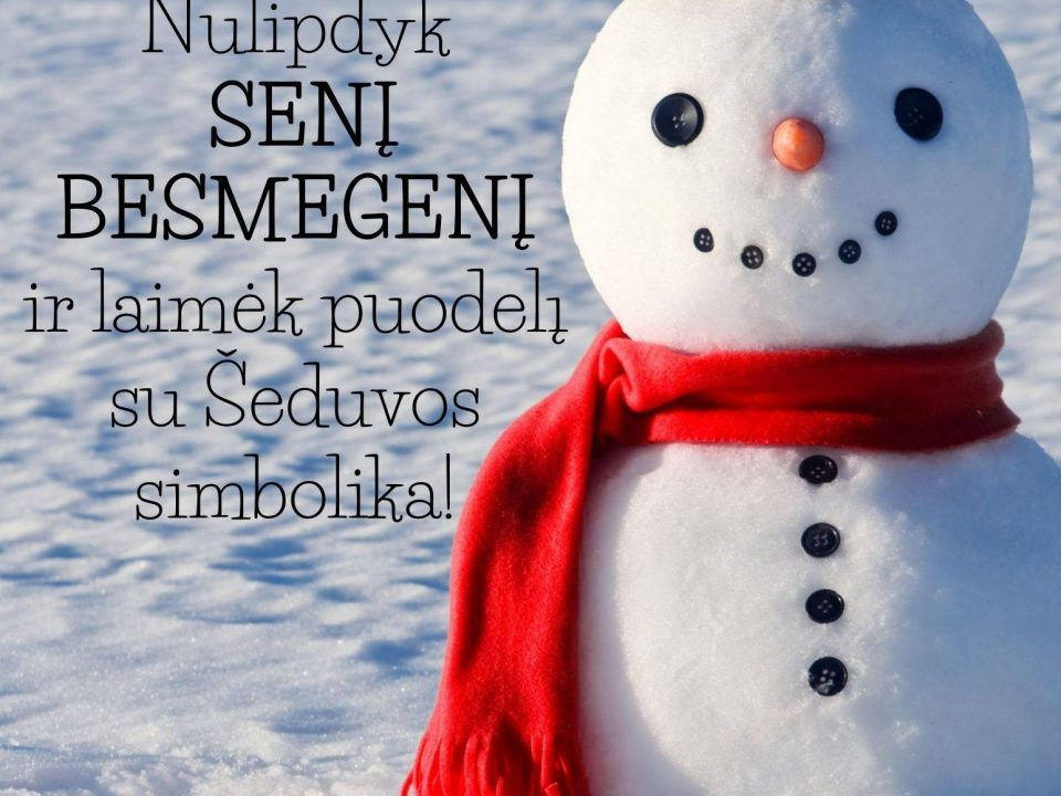 Raginame džiaugtis žiemos malonumais ir lipdyti sniego senius - besmegenius 😜